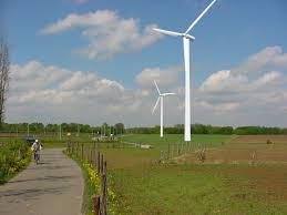 windmolen in het groen