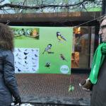 CDA: Uitdelen pindakaas voor vogels groot succes!